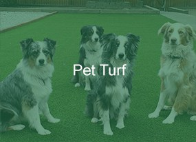 Artificial Turf Products for your Dogs