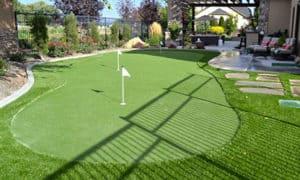 Artificial Turf Putting Green in Backyard