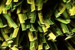ProGreen Synthetic Artificial Grass