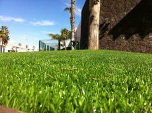 Artificial Grass and Water conservation for HOAs
