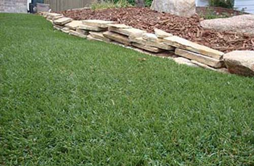 Fall and Artificial Turf… Now's the time