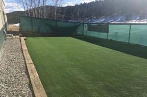 Why switch from Natural Grass to Artificial Grass