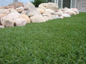 Artificial-Turf-Lawn-2