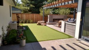 Turf-Backyard-1