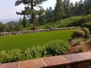 artificial-grass-lawn3