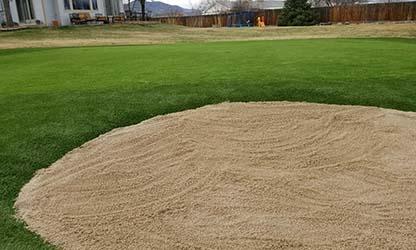 Golf Turf & Putting Greens